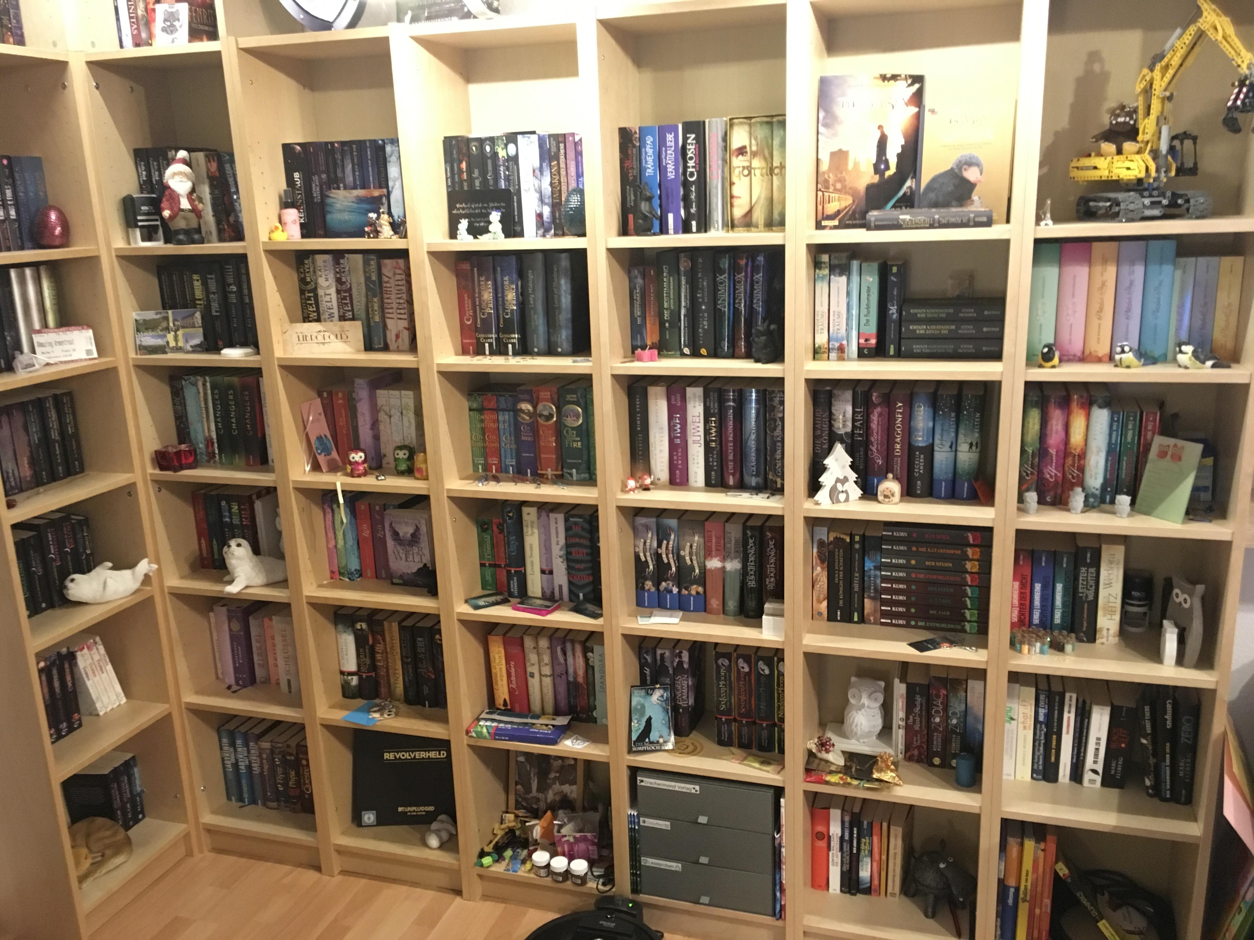 Hier seht ihr mein Bücherregal