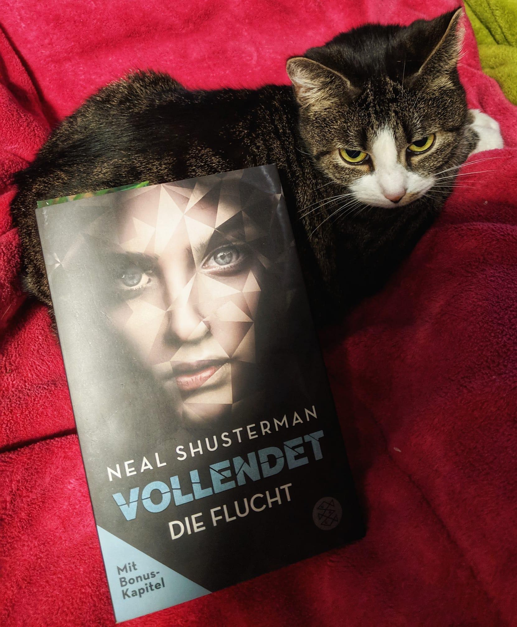 """Rezension – Vollendet """"Die Flucht"""""""